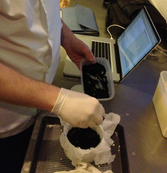 Fantastic smelling Onion ash, invented by Josh and used with second experiment
